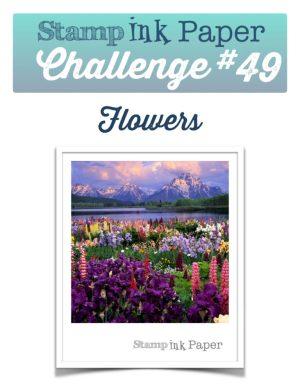 SIP-Challenge-49-Flowers